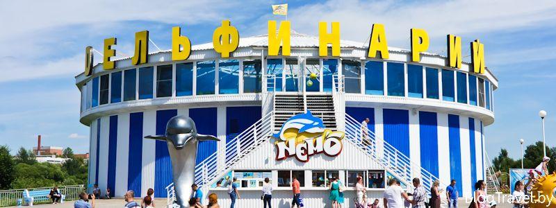 Дельфинарий Немо в Минске - представление и плавание с дельфинами