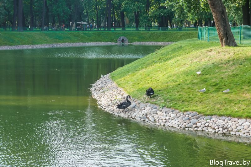 Что посмотреть и куда сходить в Санкт-Петербурге