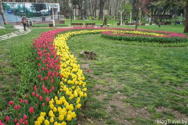 Фестиваль тюльпанов в парке Гюльхане